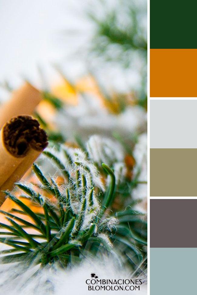 combinacion_de_colores_variedad_de_temporada_4