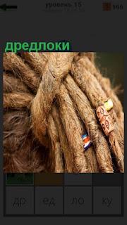 Спутанные волосы дредлоки на голове расположены