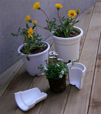 Innovative Tools and Gadgets for Plants (15) 15