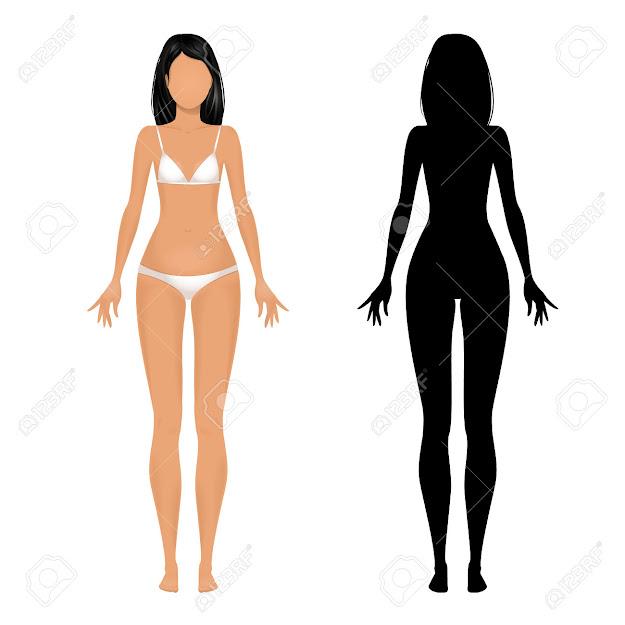 Female Body Template Stock Vector
