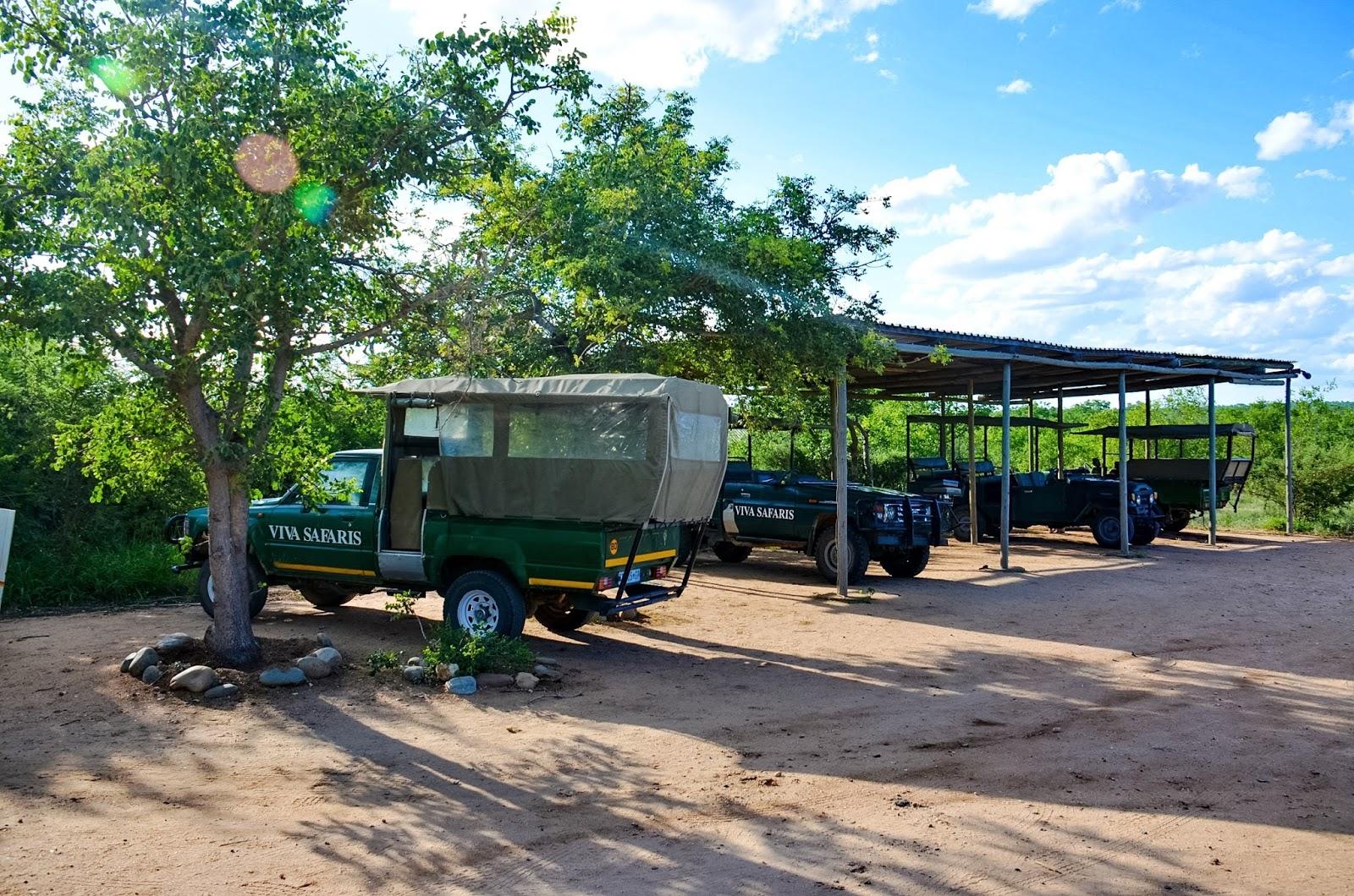 viva safaris in kruger national park