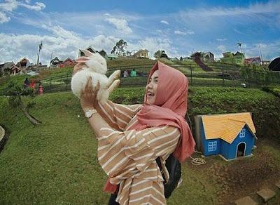 Plaza Garden Wisata Edukasi Rabbit Field