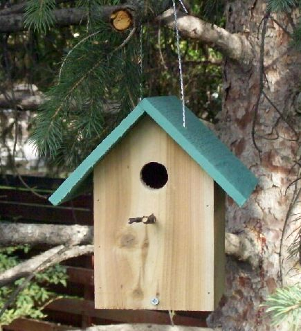 building+bird+houses Simple Birdhouse Plans on free martin, free church, free printable wren, peterson bluebird,