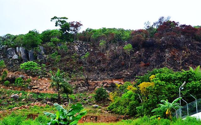 Penampakan lahan di perbukitan yang dibakar