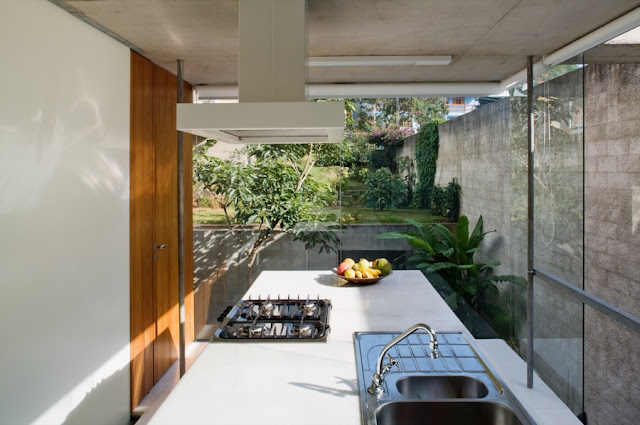 Picture of the kitchen and the backyard as seen through the glass walls