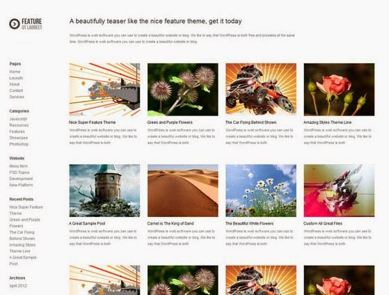 Feature theme