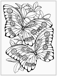 Butterfly Adult Coloring Pages