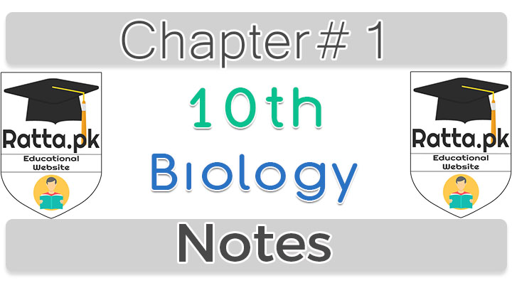 10th Class Biology Chapter 1 Gaseous Exchange Notes