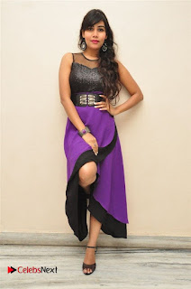 Telugu Actress Rachana Smith Stills at Money is Honey Audio Release  0041.jpg