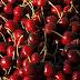ÚLTIMA HORA - Descobertos novos alimentos que travam multiplicação de cancro