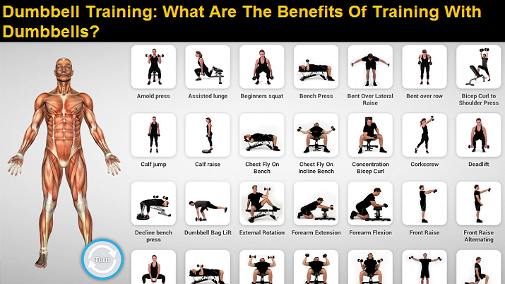 The Benefits of Training with Dumbbells