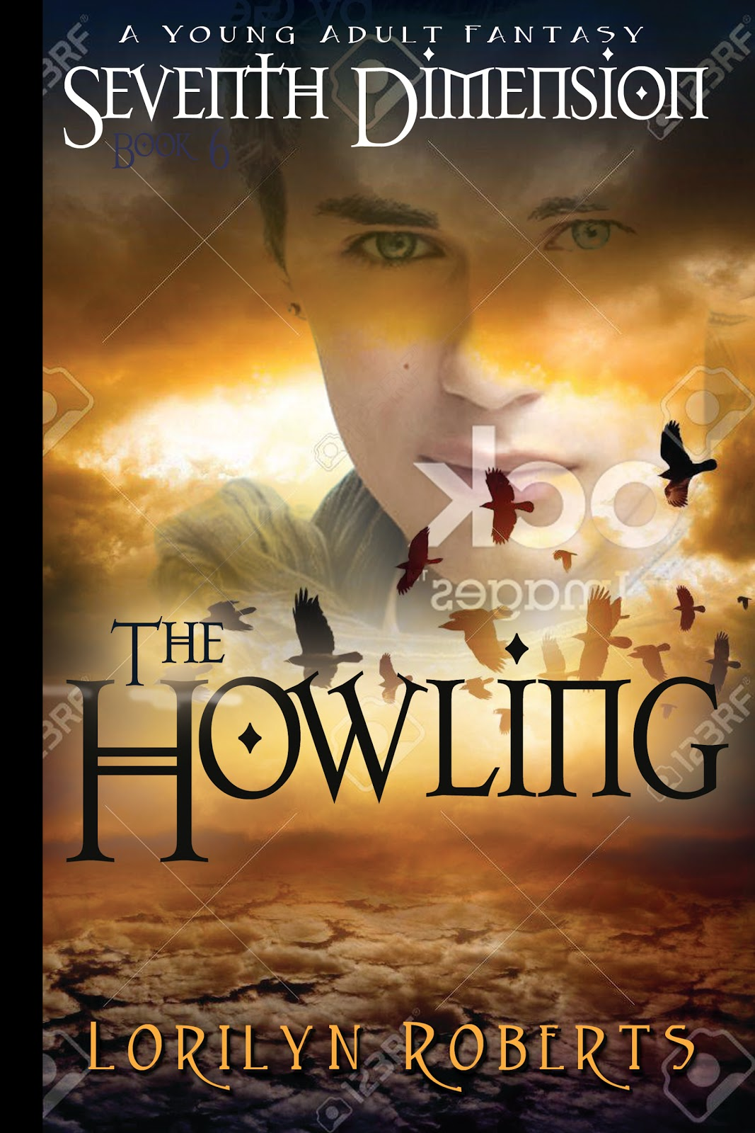 Young Adult Book Cover ~ Christian fantasy author lorilyn roberts which book cover do you