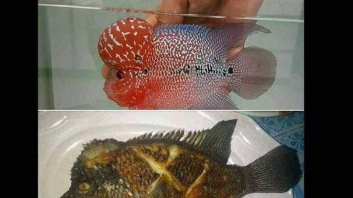 Suruh Pembantu Goreng Ikan Segar, Majikan ini Benar-Benar ...