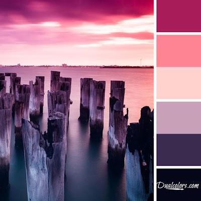 Variedad En Color-Color 44