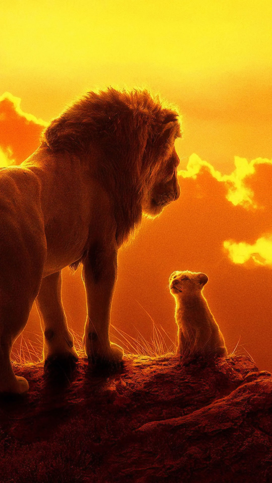 The Lion King 2019 Mufasa Simba 4k Wallpaper 20