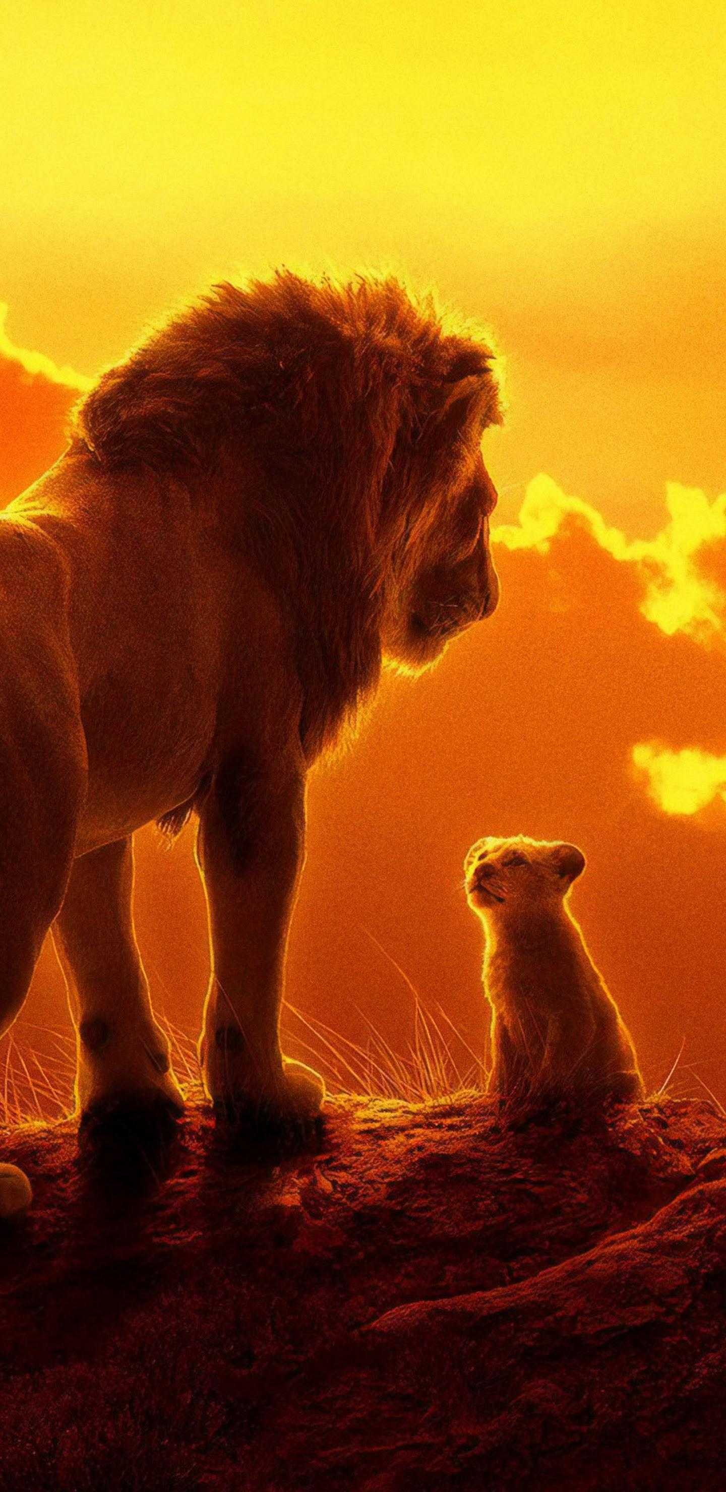 The Lion King 2019 Mufasa Simba 4k Wallpaper 20