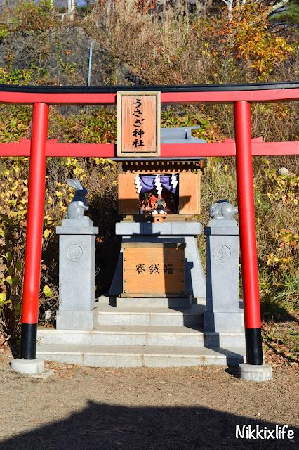 【日本。河口湖】天上山公園・高人一等的必訪景點 20