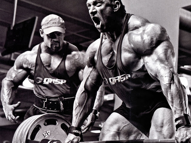 bodybuilding partner