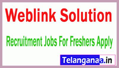 Weblink Solution Recruitment Jobs For Freshers Apply