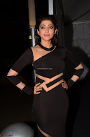 Pranitha Subhash in a skin tight backless brown gown at 64th Jio Filmfare Awards South ~  Exclusive 020.JPG