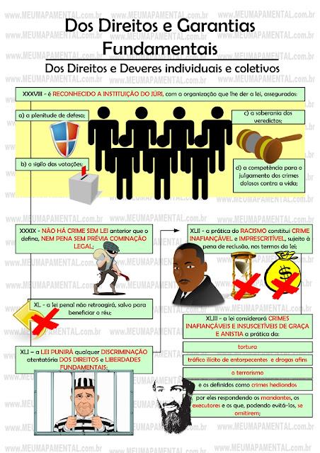 Artigo 5 e 6 da constituicao federal