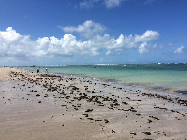 O paraíso da Praia de Tamandaré