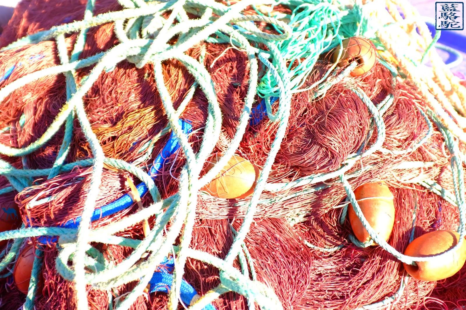 Le Chameau Bleu - Maille d'un filet - Port du Brusc