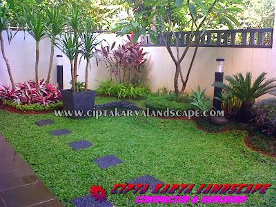 TUKANG TAMAN JAKARTA | taman belakang | CIPTA LANDSCAPE : jasa tukang taman