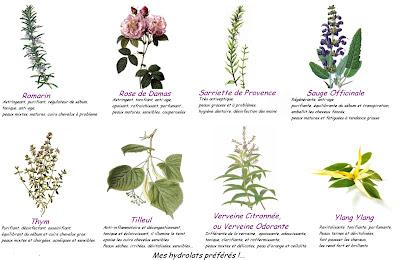 affiche propriétés hydrolats et eaux de fleurs aromatiques