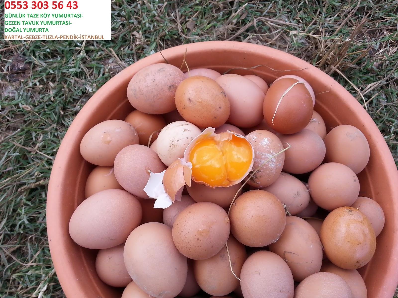 Doğal Yumurta Nasıl Anlaşılır