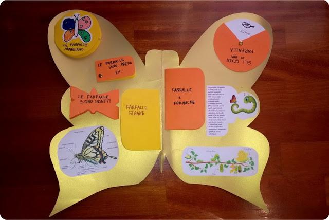 lapbook e homeschooling