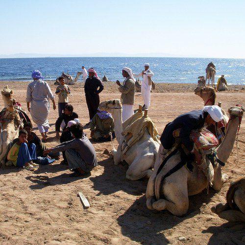 A Brief Look At Sinai