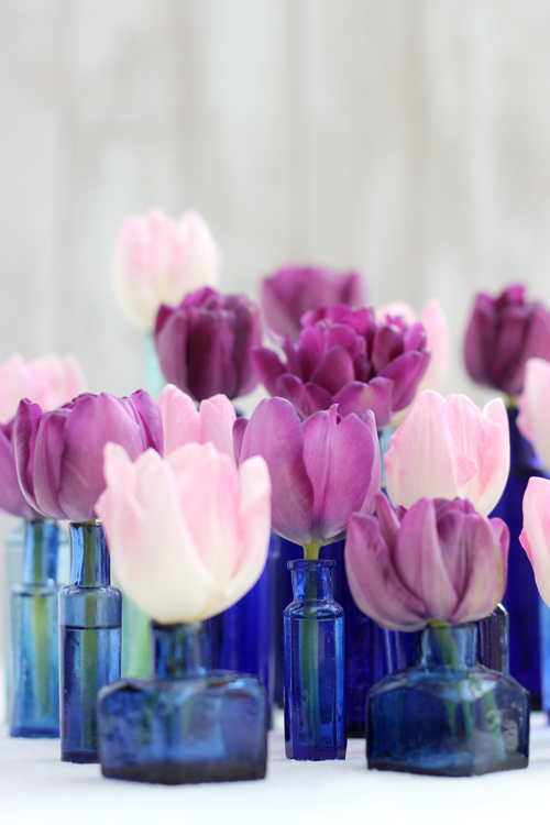 pink tulips in blue ink bottles