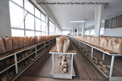coffee sample room at the Nairobi Coffee Exchange
