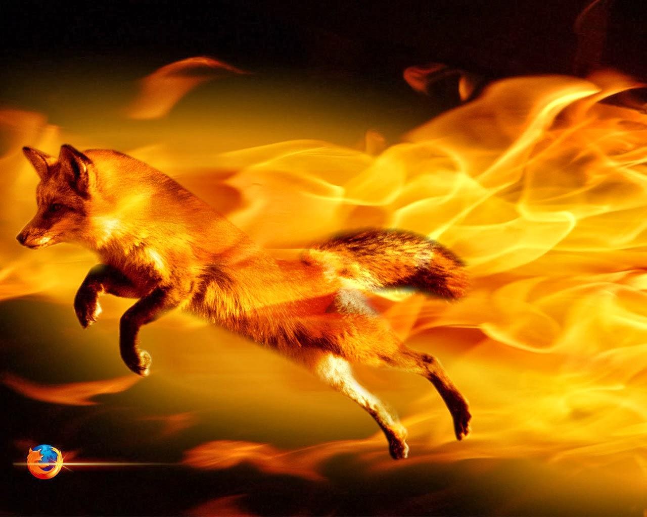 best fire wallpaper background - photo #35