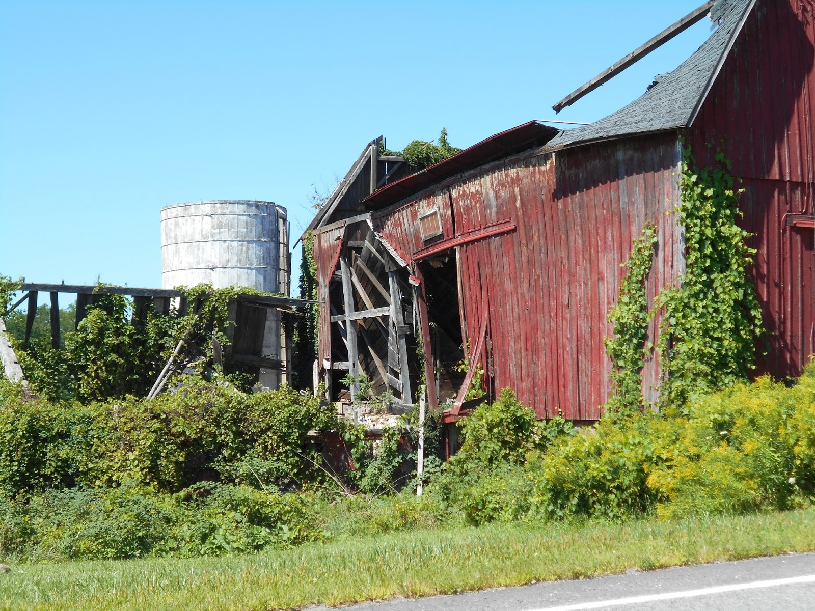 New York State of Mind: BARNS - AGAIN
