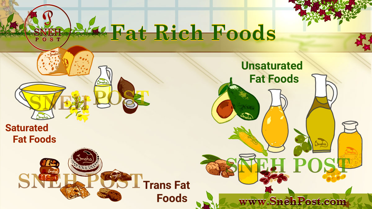 Fat nutrient: Nutrition fat rich food sources illustration (Saturated fat food sources: Chocolate, cheese, coconut oil; Unsaturated fat food sources: Cashews, olive oils, avocado, soybean, corn, peanut, canola; Trans fat food sources: Doughnuts, cake, cookies, crackers)