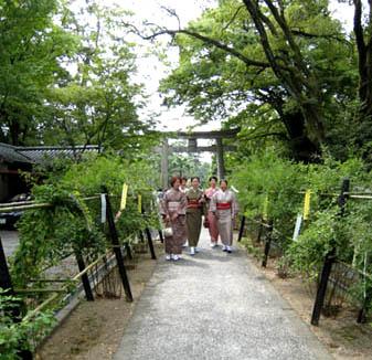 Hagi Matsuri, Nashinoki-jinja Shrine, Kamigyo-ku, Kyoto