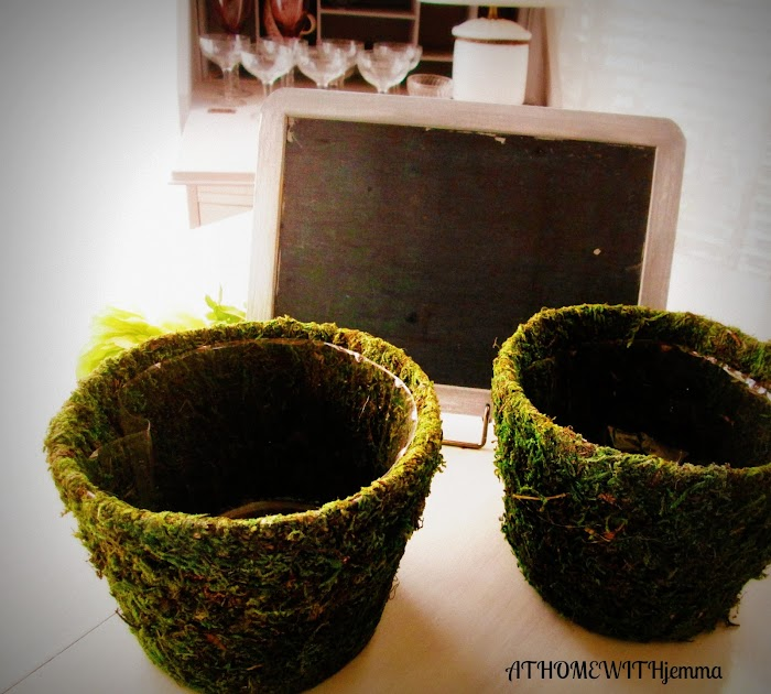 Decorating with Moss Pots and Baby's Breath