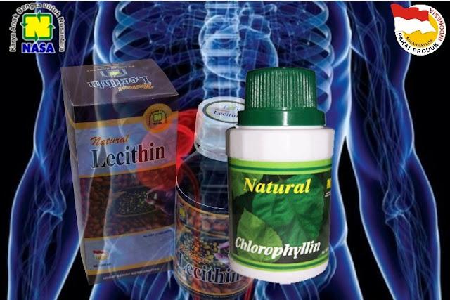 Pengobatan Herbal Nasa Untuk Penyakit Gagal Ginjal