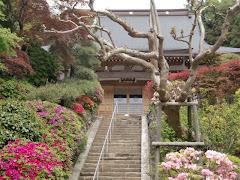 鎌倉・久成寺