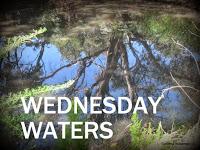 http://waterysonglines.blogspot.com.au/