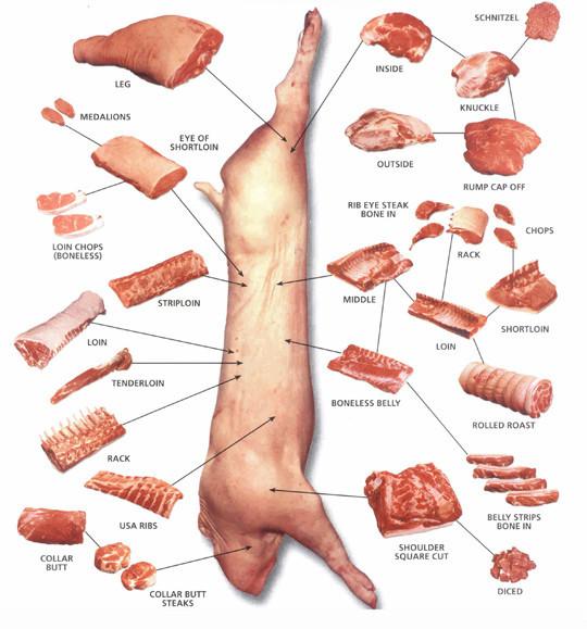 partes del cerdo, inglés