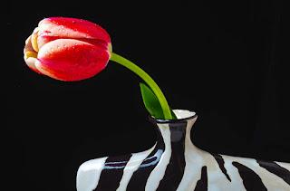 pinturas-bodegones-flores-solitarias