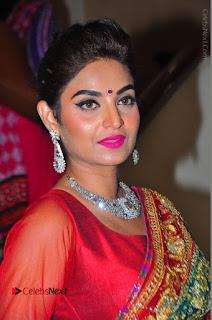 Model Sharon Fernandes Stills in Red Saree at Trendz Exhibition Launch  0020.JPG