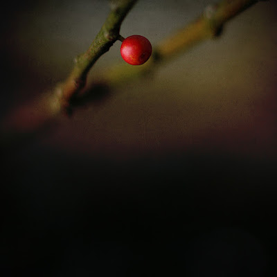 "Elogio de ""El elogio de la sombra"" de Junihiro Tanizaki."
