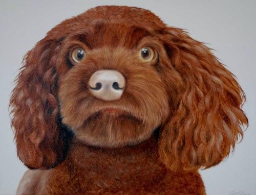 Pet Portrait Cockapoo oil on canvas