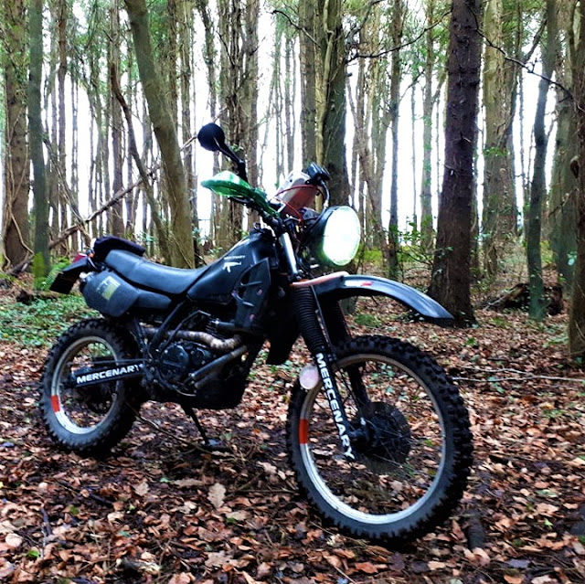 Dirtbiking on the Forest Moon of Endor...