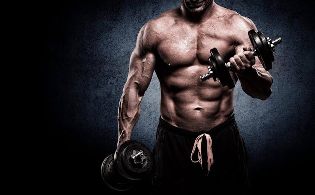 Noções básicas de dieta anabólica: construir músculos e perder gordura