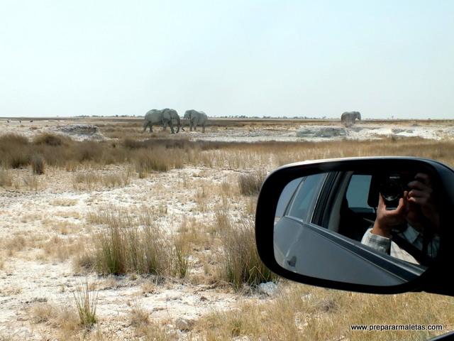consejos para viajar a Namibia